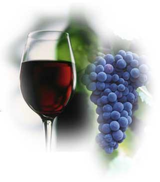 Despre vin: Tehnici de vinificatie pentru vinuri rosii