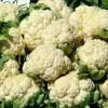 Salată de conopidă II