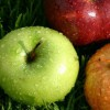 Sufleu de mere cu gris