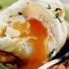 Ouă cu fenicul