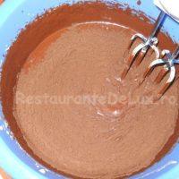 Sufleu_de_ciocolata_cu_inghetata_de_vanilie_si_topping_de_caramel_12