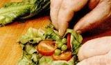 Salata de mazare cu unt