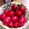 Ouă Roşii Tradiţionale de Paşti