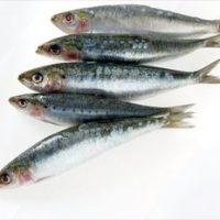 Ciorba de sardine cu bors