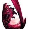 Totul despre vinuri 3