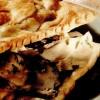 Pateuri cu ciuperci si ardei iute
