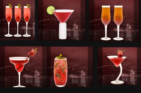 Cocktail Apri Top