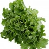 Salate: Salata asortata