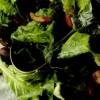 Salate pentru Revelion