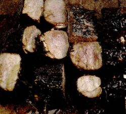 Muşchi de porc la grătar