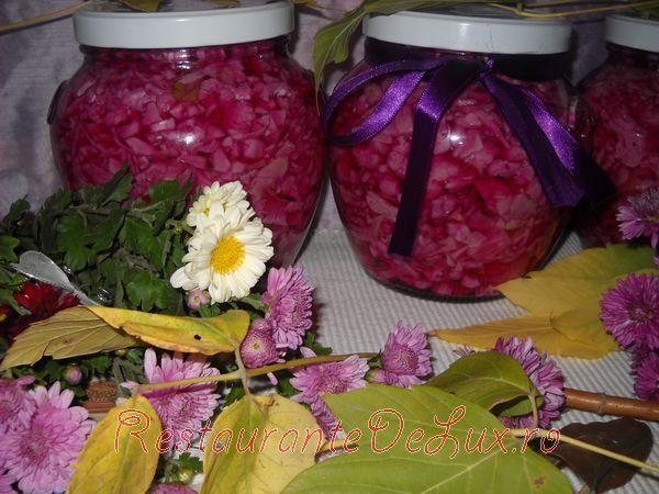 Conopida cu varza rosie pentru iarna