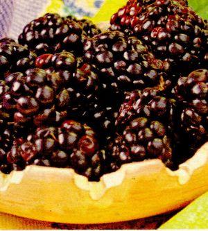 Crema_de_iaurt_cu_fructe.png