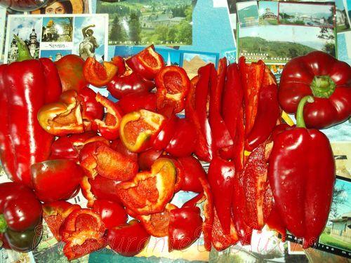 Gogosari cu ardei capia in otet pentru iarna