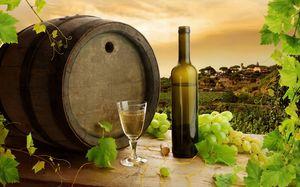 Filtrarea vinului
