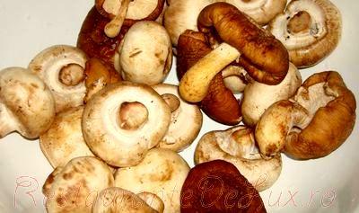 Budinca de ciuperci cu smantana