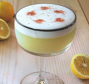 Cocktail_pisco_sour_08