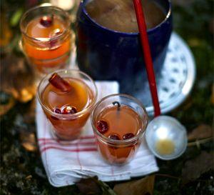 Punci_cu_gin_si_scortisoara