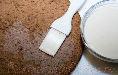 Tort_cu_crema_de_ciocolata_si_cacao_03