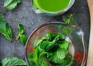 Plante medicinale: menta