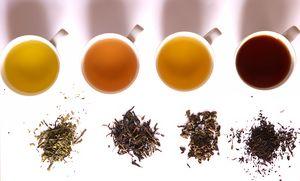 Raspandirea ceaiului in Mongolia si Rusia
