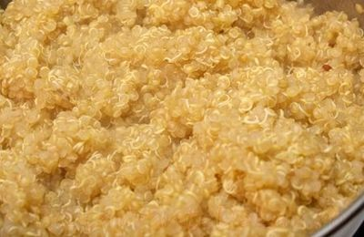 Salata_de_pui_cu_sote_de_legume_si_quinoa_04