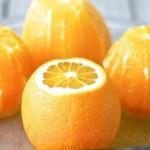 Marmelada din coaja de portocale