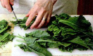 Mancare de stevie proaspata