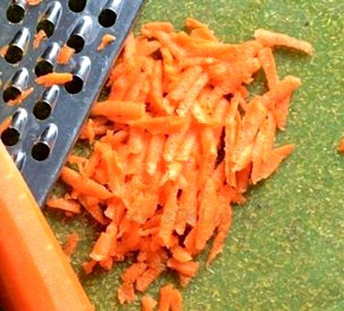 Mancare de morcov cu pogacele de oua