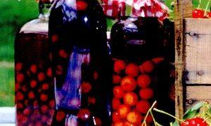 Visinata_cu_alcool_dublu_rafinat
