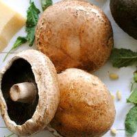 Ciuperci umplute in vin