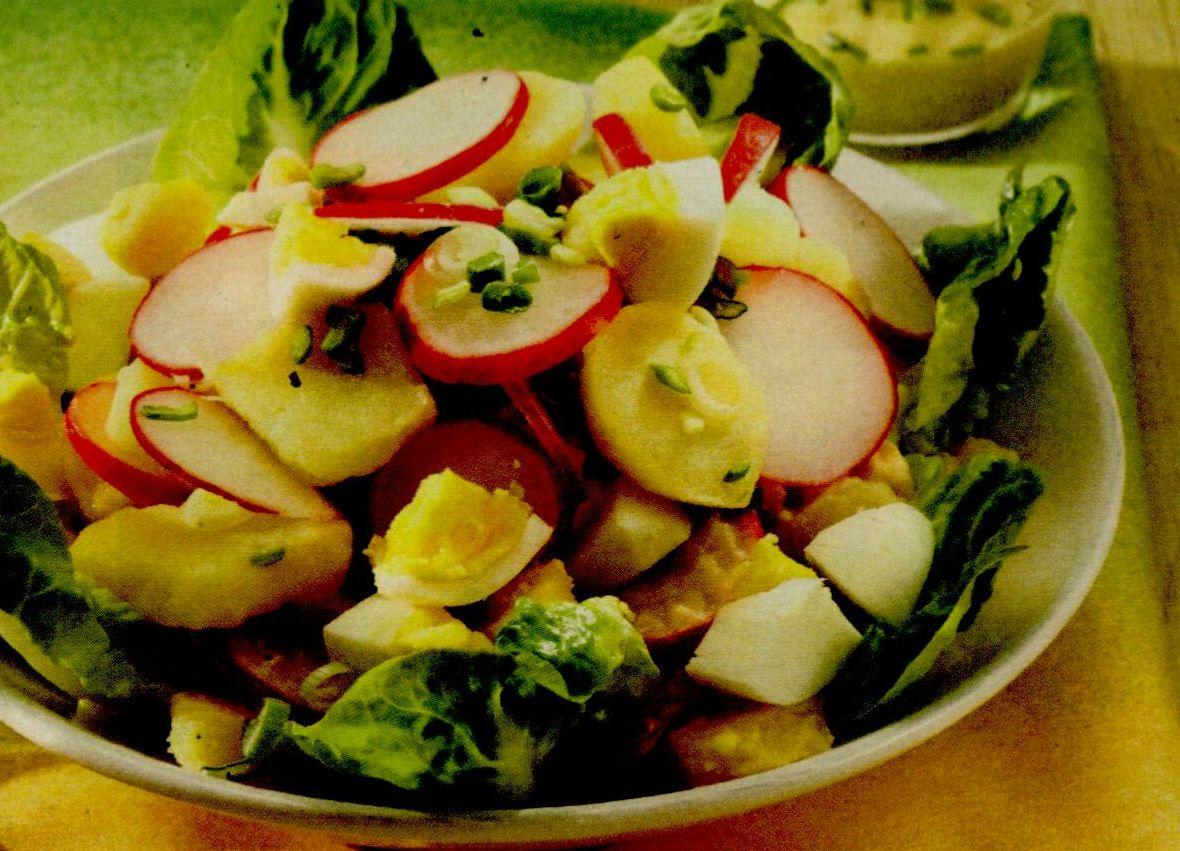 Salata egipteana cu ridichi