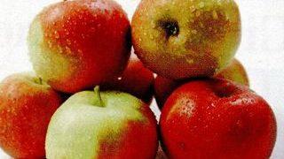 Prajitura cu mere si caise