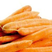 Muratura cu morcovi