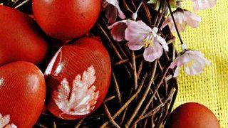 Oua rosii ecologice