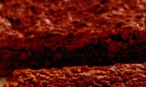 Negresa_cu_ciocolata_amaruie