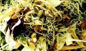 Salata cu germeni de soia