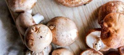 Pate din ciuperci