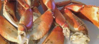 Crab umplut
