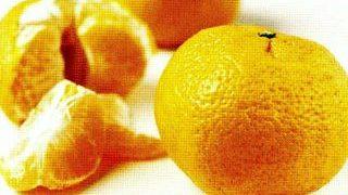 Desert cu mandarine