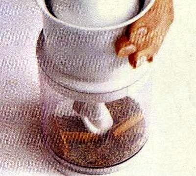 Tocanita aromata de conopida cu bame