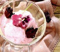 Inghetata de hibiscus