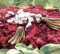Salata cu sfecla, mere si nuci