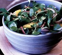 Salata picanta de untisor